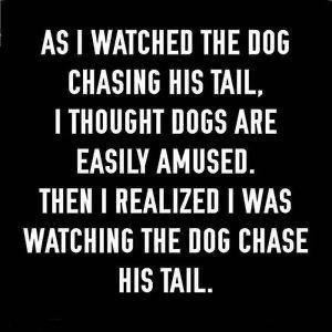dogs tails